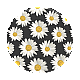 http://www.popsockets.co.kr/data/item/1553087798/thumb-Daisies_01_TopView_80x80.png